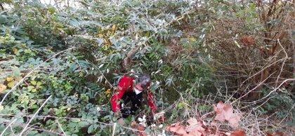 Localizan restos humanos en un monte de Barakaldo tras una denuncia por desaparición de un vecino en julio