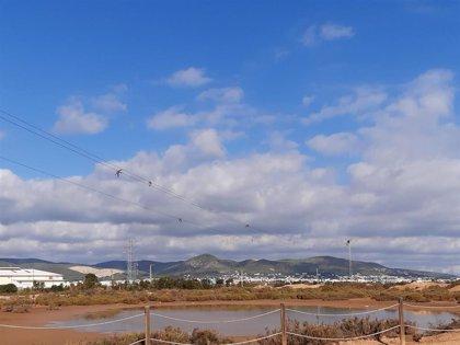 Endesa remodela una de sus líneas de media tensión para proteger la avifauna del Parque Natural de Ses Salines