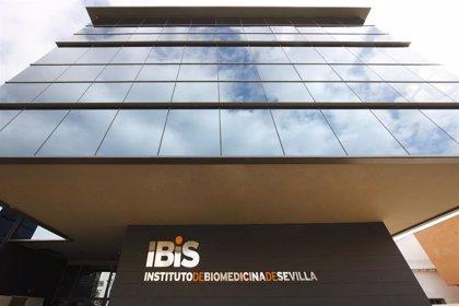 El IBiS avanza en la búsqueda de nuevos tratamientos frente a infecciones por bacterias productoras de carbapenemasas