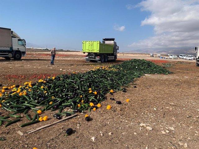Agricultores de Almería arrojan pepinos, pimientos y berenjenas por los bajos precios