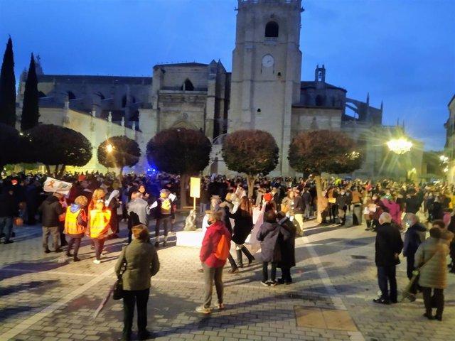 Participantes en la manifestación de Palencia.