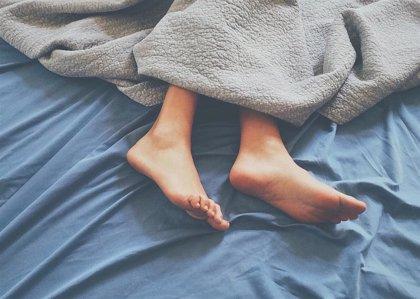 Los astrocitos son tan importantes como las neuronas en por qué y cómo dormimos