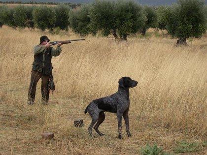 C-LM permitirá acceder a su territorio para cazar pese al cierre perimetral