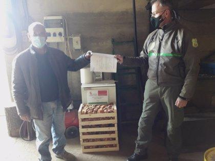 El valor de los decomisos micológicos en Soria suma 14.400 euros