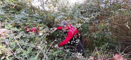 La Ertzaintza continuará buscando este fin de semana más restos humanos en el monte Rontegi de Barakaldo