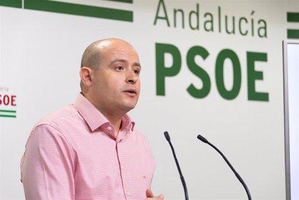 PSOE asegura que nueve de cada diez acogidos a un ERTE en Almería han podido regresar ya a su trabajo