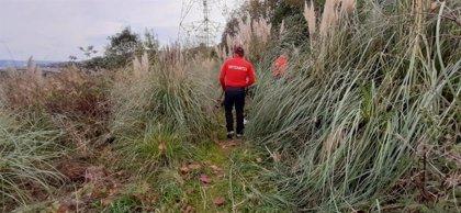 Continúa la búsqueda de restos humanos en el monte Rontegi de Barakaldo