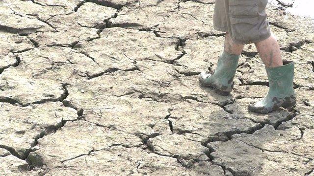 Suelo cuarteado por la sequía