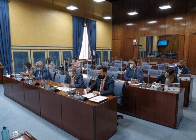 Diputados en la comisión de Hacienda y Financiación Europea del Parlamento andaluz.