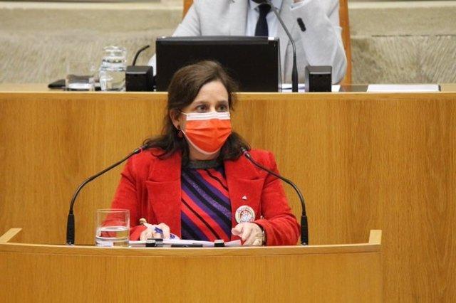 La diputada de IU, Henar Moreno