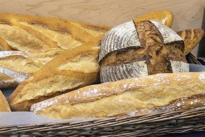 Matemáticas para mejorar la producción de pan. El CSIC participa en un proyecto europeo para desarrollar una aplicación