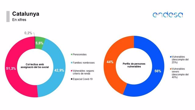 Clients d'Endesa a Catalunya amb Bo Social