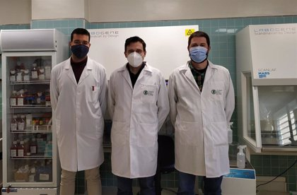 """Investigadores de la UCV crean un filtro para mascarillas para """"inactivar SARS-COV-2 y bacterias multirresistentes"""""""