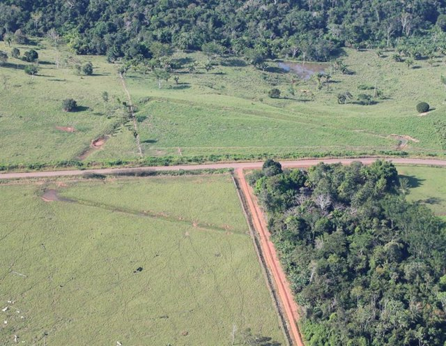 Vista aérea de un sitio de investigación llamado Severino Calazans.