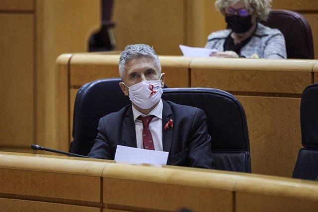 El ministre d'Interior, Fernando Grande-Marlaska, al Senat. Madrid (Espanya), 1 de desembre del 2020.