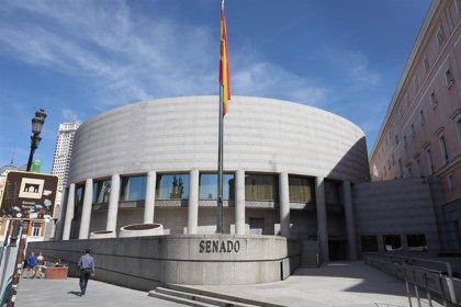 El Senado aprueba erradicar la esterilización forzada con apoyo de todos los grupos y abstención de Teruel Existe