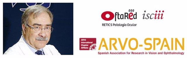 Coordinador general de Oftared, José Carlos Pastor, ha sido elegido presidente de este 'capítulo español' de ARVO