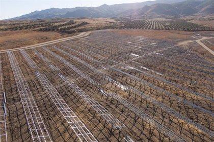 AQ Volta pone en marcha la construcción de su segundo proyecto fotovoltaico en Almería