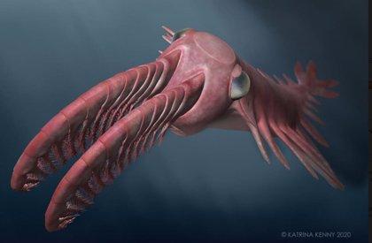 Antiguas criaturas desataron una 'carrera armamentista' por su visión