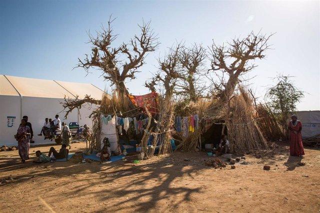 Refugiados etíopes en el campo de Um Rakuba, en Sudán