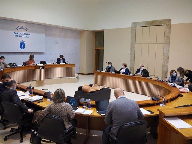 Comisión de Sanidade, Política Social e Emprego el 3 de diciembre de 2020