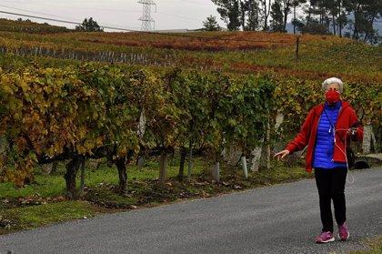 Galicia tuvo un otoño cálido y seco, con un 20% menos de precipitaciones y el noviembre más caliente desde hace 30 años