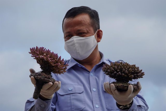 El ministro de Recursos Marinos y Pesca de Indonesia, Edhy Prabowo.