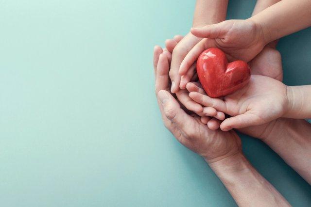 Solidaridad, amor. Manos sosteniendo un corazón.