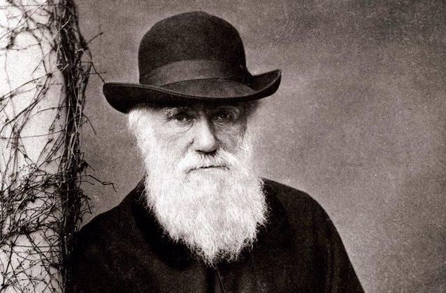 Este 12 de febrero se cumplen 210 años del nacimiento, en 1809, del naturalista británico Charles Darwin, el científico que acreditó la selección natural como base de la evolución de las especies