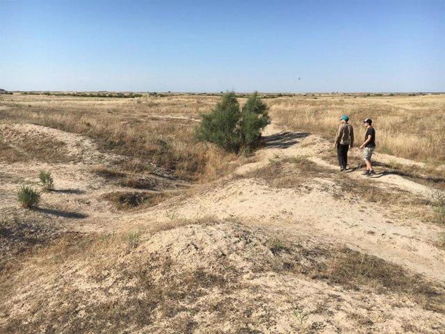 Los investigadores investigan un canal medieval abandonado, el oasis de Otrar, Kazajstán.
