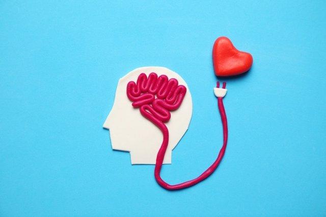 Figura de hombre con cerebro y corazón rojo. Amor e inteligencia.