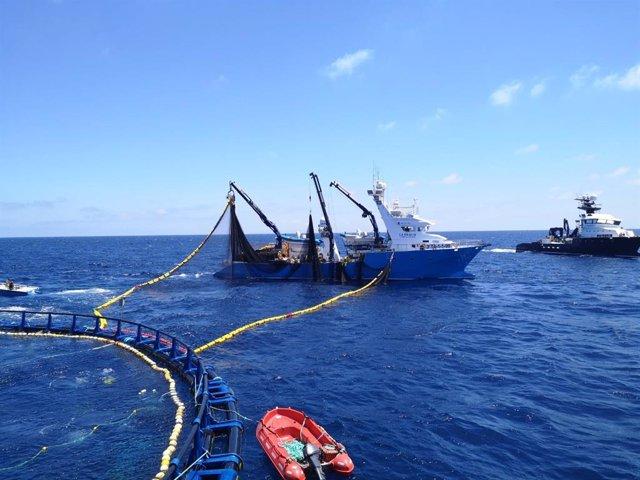 Barcos pesqueros de Balfegó pescando atún rojo