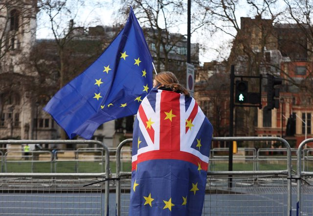 14 December 2020, England, London: A pro-European Union protester stands outside the Houses of Parliament after Brexit talks were extended on Sunday following a meeting betweenUK Prime Minister Boris Johnson and European Commission president Ursula von de