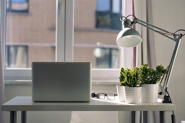 Plantas, ordenador y lámpara ante una ventana.