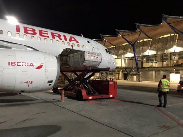 Iberia trae vacunas a España.