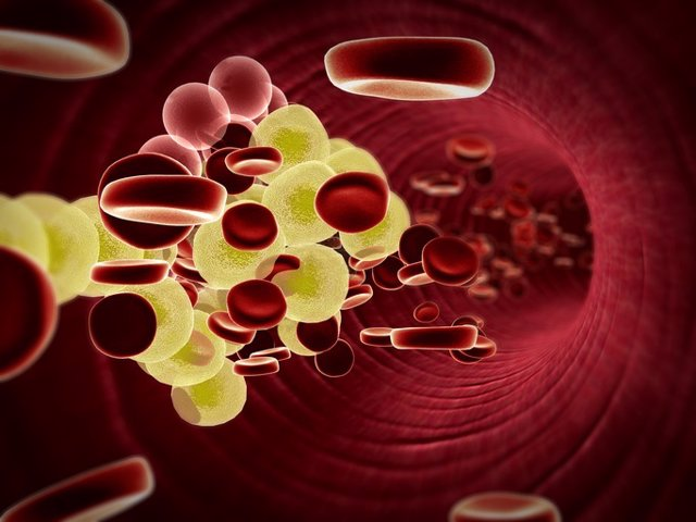 Cholesterol in the blood