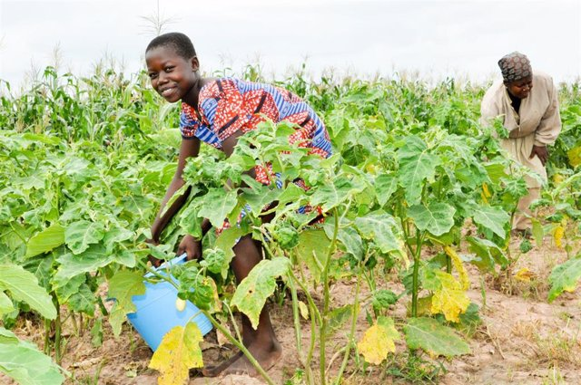 Florence Kwah, a farmer who could only farm on one acre of land because she lacked the finance and access to land.
