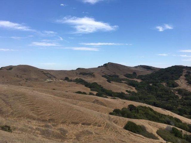Un ecosistema de tierras secas en el norte de California muestra una disminución de la humedad del suelo, pero pocos cambios en la disponibilidad de agua superficial.