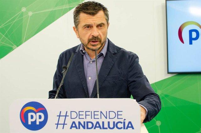 El vicesecretario general del PP-A, Toni Martín, en una foto de archivo.