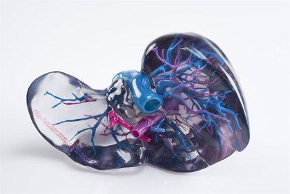 Salud.-El hígado extrae células inmunitarias para hacer que la inmunoterapia no funcione