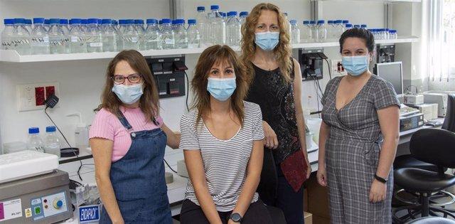 María Rosa López Huertas, Elena Mateos, Mayte Coiras y y Lorena Vigón, de la Unidad de Inmunopatología del Sida y autoras del estudio,