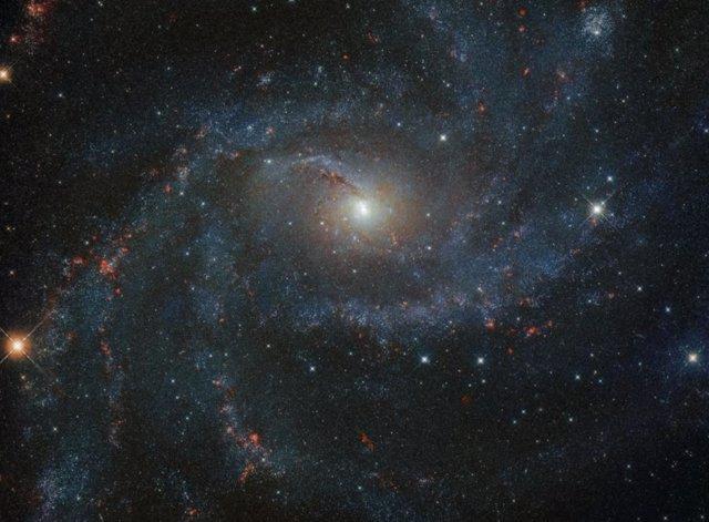 Galaxia NGC 6946