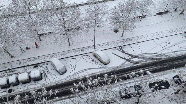 Nevades registrades a Lleida a causa del temporal 'Filomena'.