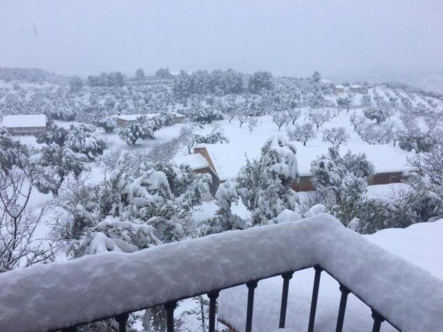 Horta de Sant Joan (Tarragona) després de la nevada del temporal Filomena