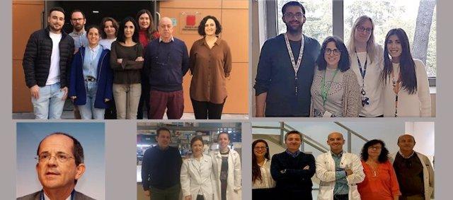 Los investigadores del CIBER que han llevado a cabo la investigación