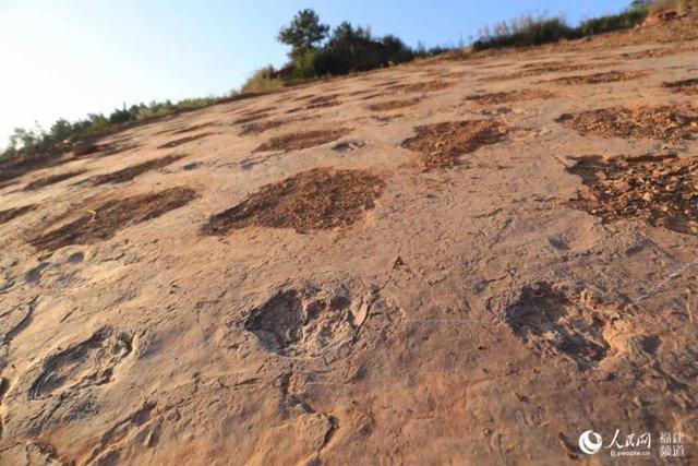 Huellas de dinosaurio encontradas en Fujian