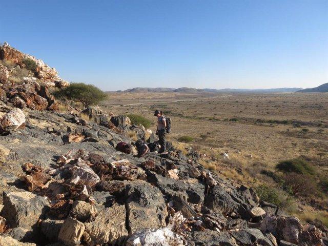 Trabajo de campo para localizar los fósiles del estudio