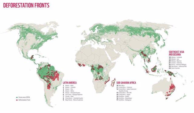 WWF alerta de que el mundo ha perdido a causa de la deforestación 43 millones de hectáreas en los últimos 13 años, el equivalente a la superficie de California (Estados Unidos).
