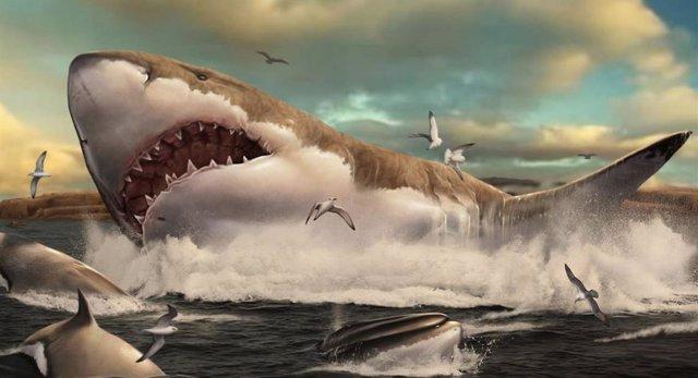 Otodus megalodon depredando la ballena Cethoterium