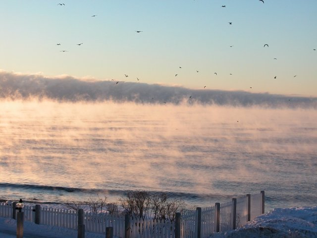 The smoke of the sea is the result of the frigid air that passes over water is relatively warm; the phenomenon is rare, even in the Arctic.